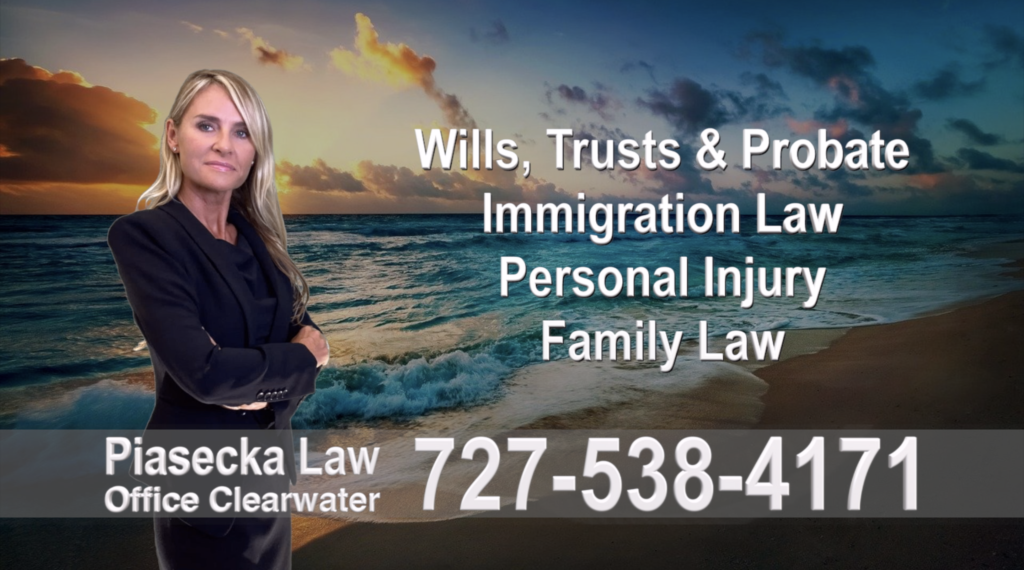Polish, Attorneys, Lawyers, Florida, Polish, speaking, Wills, Trusts, Family Law, Personal Injury, Immigration, , 1