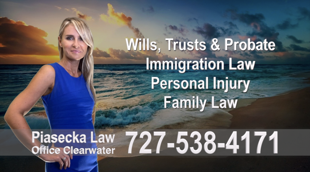 Polish, Attorneys, Lawyers, Florida, Polish, speaking, Wills, Trusts, Family Law, Personal Injury, Immigration, 1
