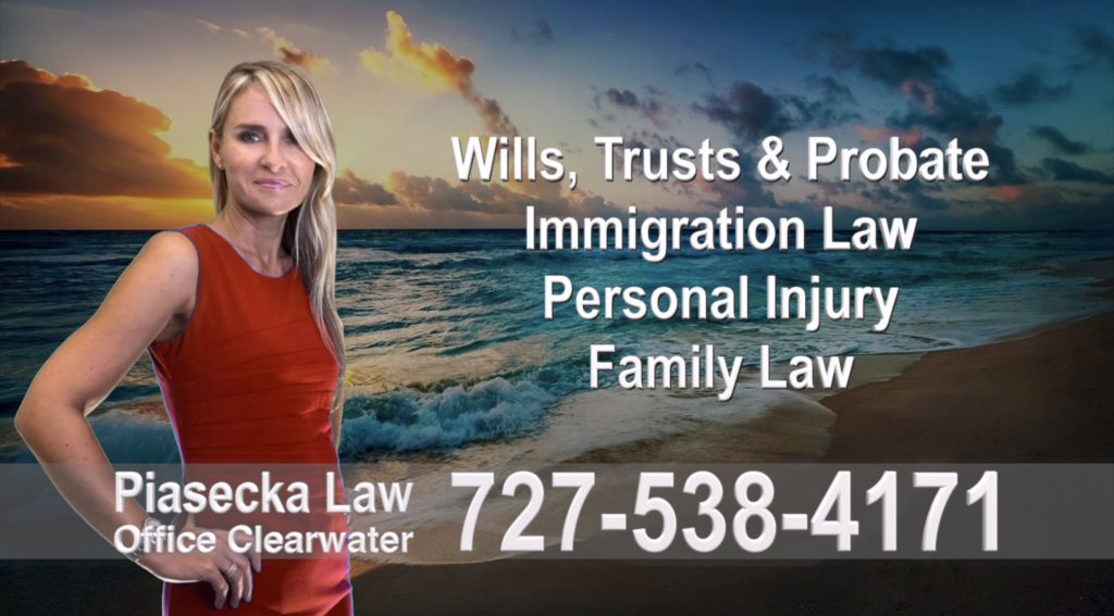 Polish, Attorneys, Lawyers, Florida, Polish, speaking, Wills, Trusts, Family Law, Personal Injury, Immigration, 11