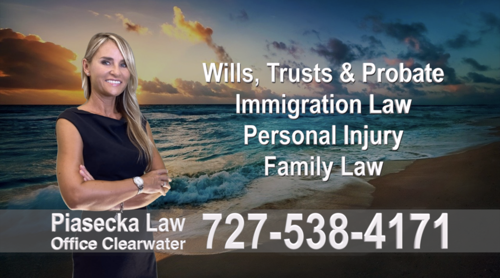 Polish, Attorneys, Lawyers, Florida, Polish, speaking, Wills, Trusts, Family Law, Personal Injury, Immigration, 17