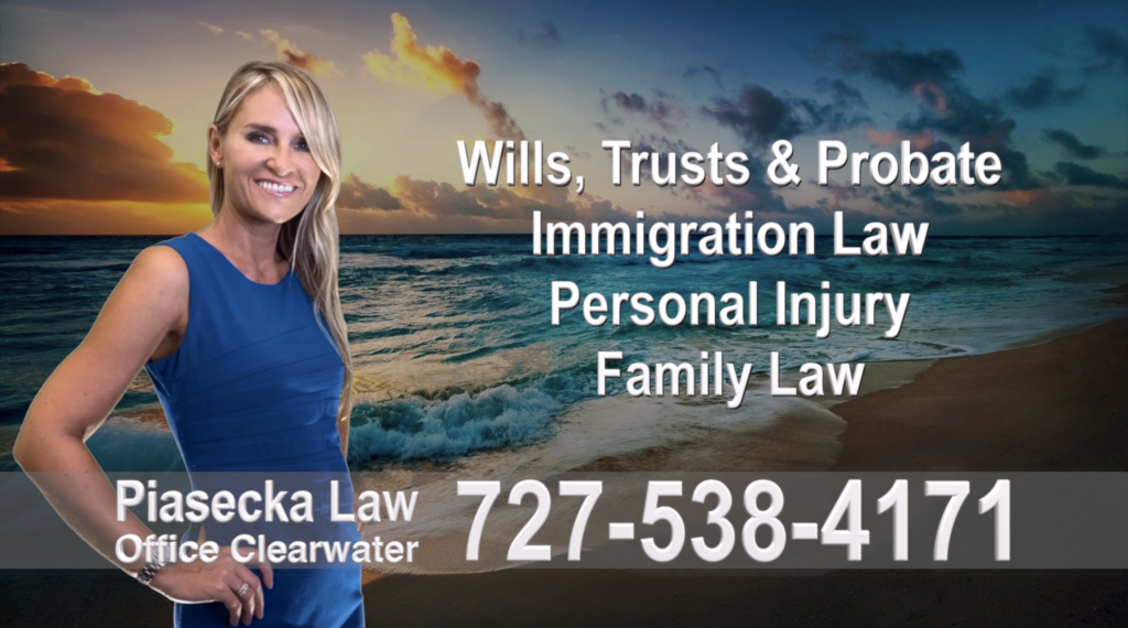Polish, Attorneys, Lawyers, Florida, Polish, speaking, Wills, Trusts, Family Law, Personal Injury, Immigration, 7
