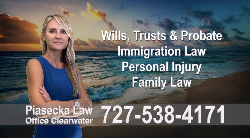 Polish, Attorneys, Lawyers, Florida, Polish, speaking, Wills, Trusts, Family Law, Personal Injury, Immigration, 8