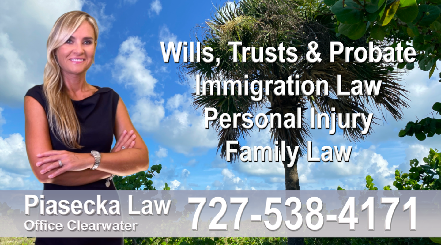 Polish Attorney Lawyer in Florida Polish speaking Wills and Trusts Family Law Personal Injury Immigration