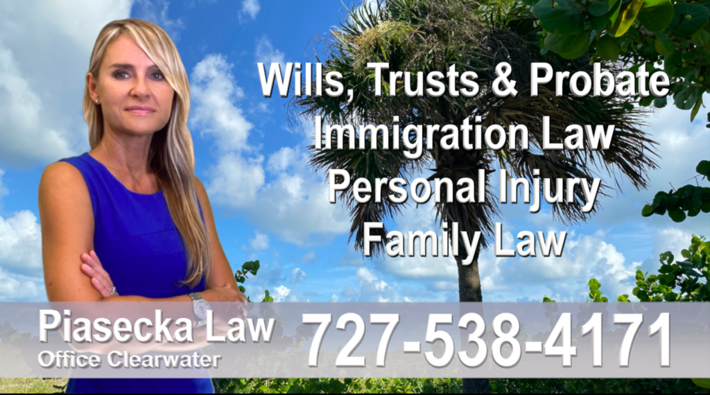 blue Polish Attorney Lawyer in Florida Polish speaking Wills and Trusts Family Law Personal Injury Immigration